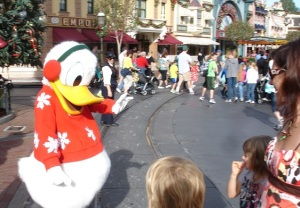 Not even Donald Duck could get a wave out of the 'Dactyl.