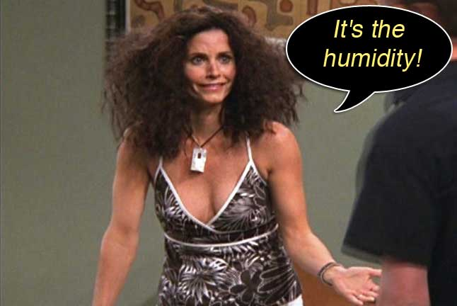 angela-barnett-monica-friends-humidity